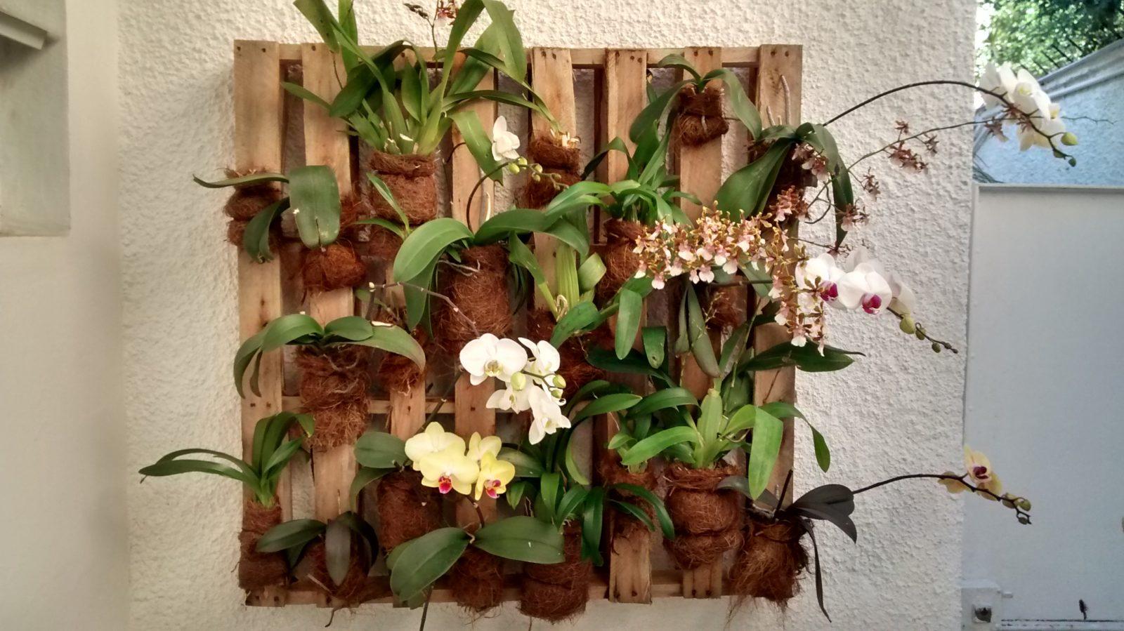 Como fazer um jardim vertical na parede de sua casa